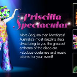 The Priscilla Spectacular