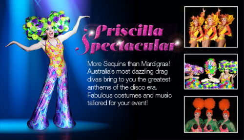 The brilliant Priscilla Spectacular!