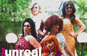 Mobwives – The Unreal Housewives